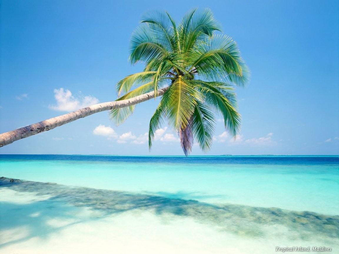 Riviera Maya | Tulum Beach Blog