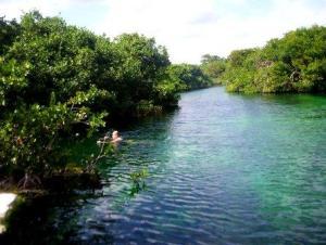 Manatee Cenote