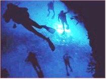 Tankah Dive Reef